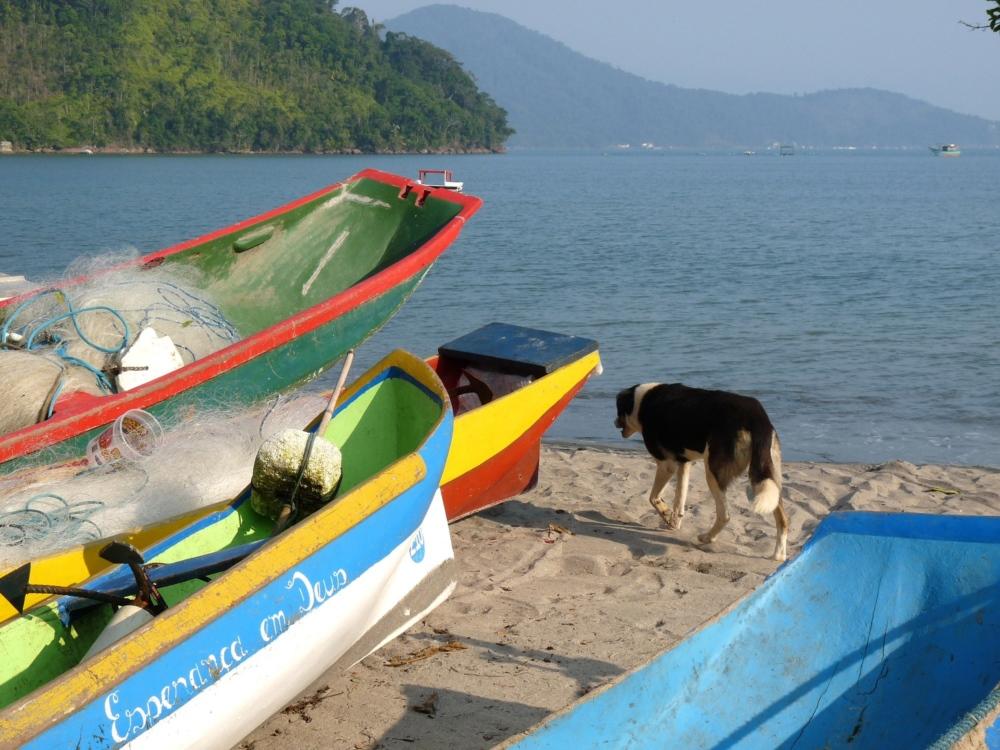 Sailing-Brazil-Ubatuba